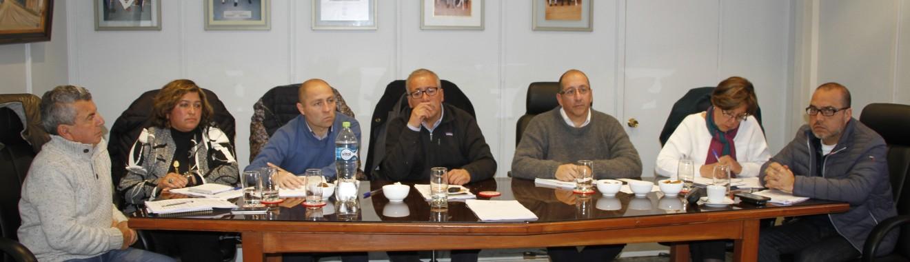 Concejo Municipal Plan Regulador 1